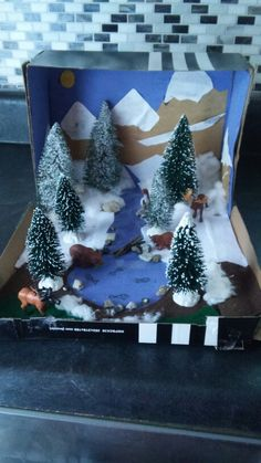 My sons newly finished taiga biome. Turned out pretty good! Ecosystems Projects, Science Projects, School Projects, Projects For Kids, Winter Crafts For Kids, Art For Kids, Bear Habitat, Free To Use Images, Animal Habitats
