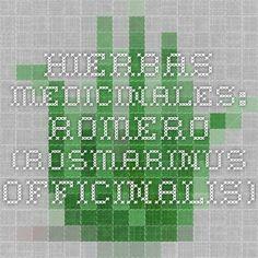Hierbas Medicinales: Romero (Rosmarinus officinalis)