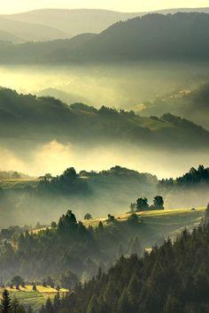 This foggy morning by Janusz Wanczyk http://500px.com/JanuszWanczyk