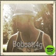 What is Your Bidding, a song by Bob Catt on Spotify