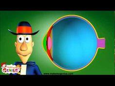 Sense of Sight - How Human Eyes Work - YouTube