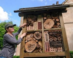 A little rot, a touch of decay and a handful of yard waste create the perfect lodging for 'beneficial' insects.