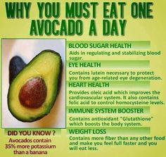 Avocado Nutrition: 15 Powerful Health Benefits of Eating Avocado Based On Science - Medical Magazine Avocado Creme, Avocado Toast, Avocado Butter, Avocado Pear, Get Healthy, Healthy Tips, Benefits Of Healthy Eating, Healthy Food, Natural Remedies