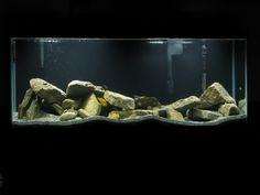 rock setup in aquarium - Google Search