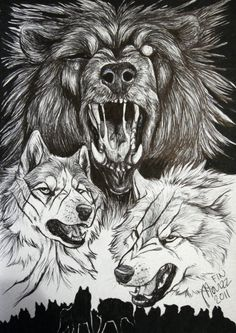 This is really quick piece of art what i do when i travel to Pori here Finland. I really really want to do something for Yoshihiro Takahashi, if i someh. Gift for Yoshihiro Takahashi Marker Drawings, Art Drawings, Kimba The White Lion, Werewolf Girl, Wolf Images, Fanart, Baby Drawing, Anime Animals, Art Reference