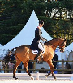 William Fox-Pitt and Neuf Des Coeurs leads Pau