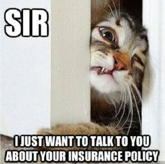 SIR! I just want to talk to you about your insurance policy! http://www.eatoninsuranceservices.com