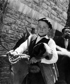 Mozo co gando Pedrafita ca 1956 Ramón Dimas