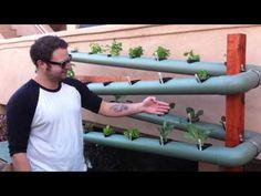 Vertical Garden