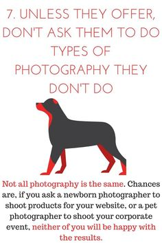 #10 ways to respect your photographer (7)