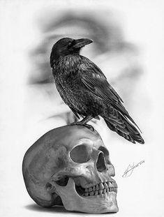 É exatamente esse crânio que quero tatuar no braço....só o corvo que vai ser um pouco diferente