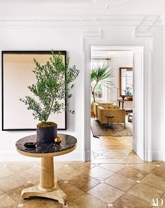 In designers Nate Berkus and Jeremiah Brent's New York City apartment, plants are in abundant supply. In the foreground, an olive tree is placed atop an occasional table, and in the background a potted dragon tree emerges from the floor.