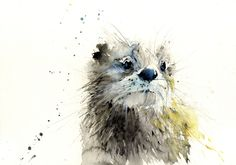 Jen Buckley Art - signed LIMITED EDITION PRINT of original OTTER painting
