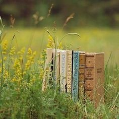 Lubimy Czytać - książki, recenzje, rekomendacje oraz wirtualna biblioteczka.