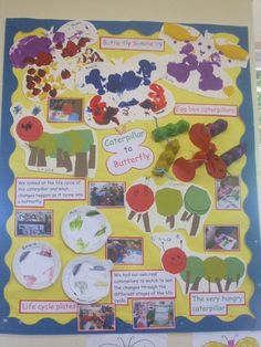 Caterpillar Display, classroom displays, class display, animal, life cycle, butterfly, symmetry, Early Years (EYFS), KS1 & KS2 Primary Teaching Resources