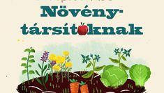 Növénytársítás: képes kalauz a legjobb növénypárosításokhoz - kert.tv