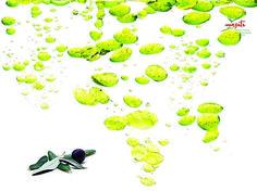 olio/still life/pubblicità