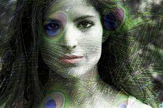 Bibi #oltrelevisioni #portrait #peacock #photo #art #colors ©Desideriphoto