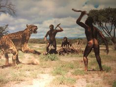 Humans eating meat evolution. Were we created to eat meat?