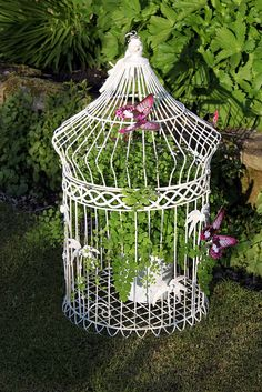 I love old bird cages used as containers.  This holds greenery, and some butterfly decorations