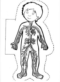 FREE science emergent reader book about the human body systems. Great science activity for preschool and kindergarten. Montessori Activities, Science Activities, Human Body Organ System, Science Lab Decorations, Human Body Organs, Body Craft, Human Body Anatomy, My Themes, Halloween Activities