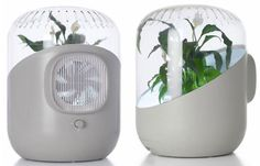 Andrea Air Purifier - I totally love this one, a fusion of nature & tech! Must go buy one quick!