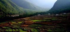 The lush valleys of Bhutan.