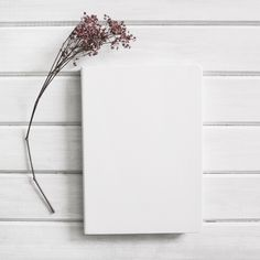 Page next to flower Free Photo Black Background Wallpaper, Book Background, Book Wallpaper, Flower Phone Wallpaper, Flat Lay Photography, Minimalist Photography, Photo Backgrounds, Wallpaper Backgrounds, Instagram Frame Template