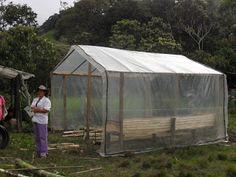 Construcción de invernadero para hortalizas. Vereda Covaria, Charalá - Santander (CO). Jóvenes Rurales Emprendedores SENA.
