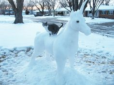 picture of unicorn made from snow | Kitty on Snow Unicorn! by shobey1kanoby