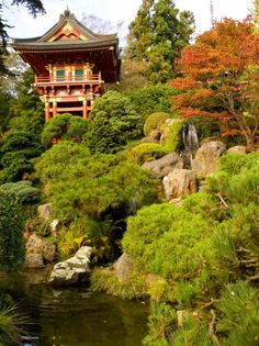 San Francisco, California: Japanese Tea Garden photo, picture, image