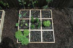 Basics of square foot gardening.