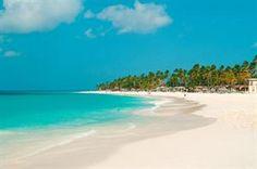 Aruba Aruba Druif Beach De vakantie waar niets hoeft en alles mag All Inclusive met een ruime keuze uit bars en restaurants direct aan het strand. Wandelen langs het kilometerslange witte zandstrand ontspannen tijdens... EUR 1424.00 Meer informatie #Aruba http://ift.tt/1RlV2rB http://ift.tt/1LI61N9
