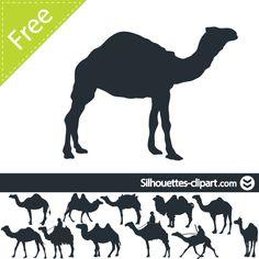camel rider pdf free download