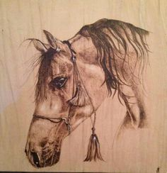 Arabian horse pyrography (by unknown artist)