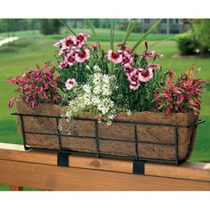 Black Rectangle Coco Liner/Mild Steel Canterbury Adjustable Deck Railing Planter - Garden Planters at Simply Planters