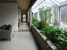 Indoor vegetable garden. Looks like a grow bed from an Earthship, just modernised.