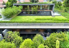 toit végétal, maison en béton végétalisée