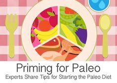Paleo Diet Tips Craving Amazing Paleo Food?
