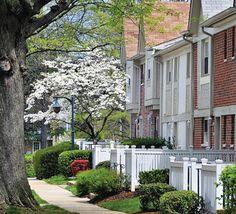 Luxury Apartments in Fairfax VA 22031 . Rent in Fairfax Pet Friendly Apartments, Falls Church, Apartment Communities, Luxury Apartments, Washington Dc, Interior And Exterior, Townhouse, Virginia, Community
