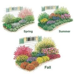 Spring Hill Nursery - front yard landscaping ideas for full sun Beautiful Flowers Garden, Amazing Flowers, Beautiful Gardens, Amazing Gardens, Spring Hill Nursery, Flower Garden Design, Flower Garden Plans, Small Garden Plans, Flower Bed Designs