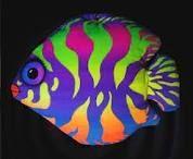 Colourful fishy :)
