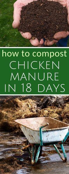 Did you know you can compost chicken manure into good, garden-ready black gold.in just 18 days? How to compost chicken manure in 18 days Garden Compost, Garden Soil, Box Garden, Green Garden, Backyard Farming, Chickens Backyard, Vegetable Garden Planner, Vegetable Gardening, Veggie Gardens