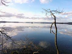 Mullingar, Ireland, Lake