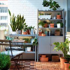 Rośliny i ogród, Wiosenna odsłona ogrodu - Seria HINDÖ: http://www.ikea.com/pl/pl/search/?query=HIND%C3%96 ÄGGPLANTA - Doniczka, biały Cena: 19,99 PLN...