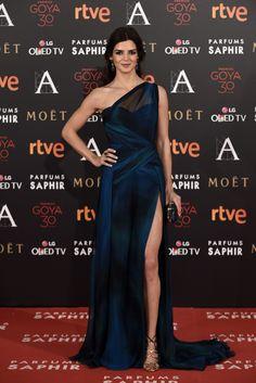 Goya 2016: La alfombra roja, foto a foto - Foto 4