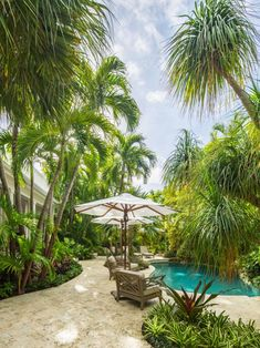 Looking for Tropical Outdoor Space ideas? Browse Tropical Outdoor Space images for decor, layout, furniture, and storage inspiration from HGTV. Tropical Backyard Landscaping, Tropical Garden Design, Florida Landscaping, Small Backyard Gardens, Backyard Pergola, Tropical Patio, Sloped Backyard, Tropical Gardens, Pergola Roof