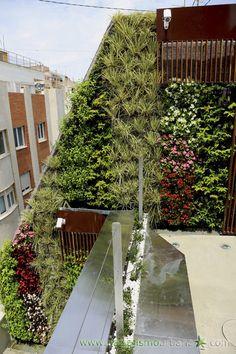 Fachada vegetal de exteriores JARDIN VERTICAL PRIVATE HOUSE IN MURCIA Paisajismo Urbano