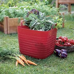 Our deep, updated take on the traditional garden trug totes all your gardening gear along with durable plastic construction, integrated handles and a 10.5-gallon capacity.