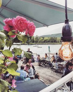 Restaurant Bar, Restaurant Design, Vienna, Sailing, Restaurants, Table Decorations, Boathouse, Vacation, Summer